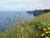 20150719_CliffsOfMoher_025