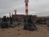 20160214_Fuerteventura_028