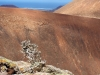 20160216_Fuerteventura_018