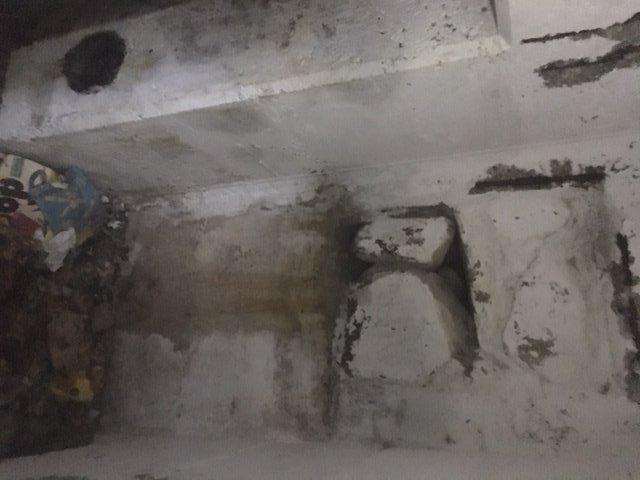 Bunker-Specht