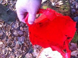 Feuchter Plastiksack um Cache